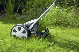 Rasen Mulchen oder auffangen