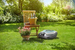 Am Sonntag mit einem Mähroboter Rasen mähen